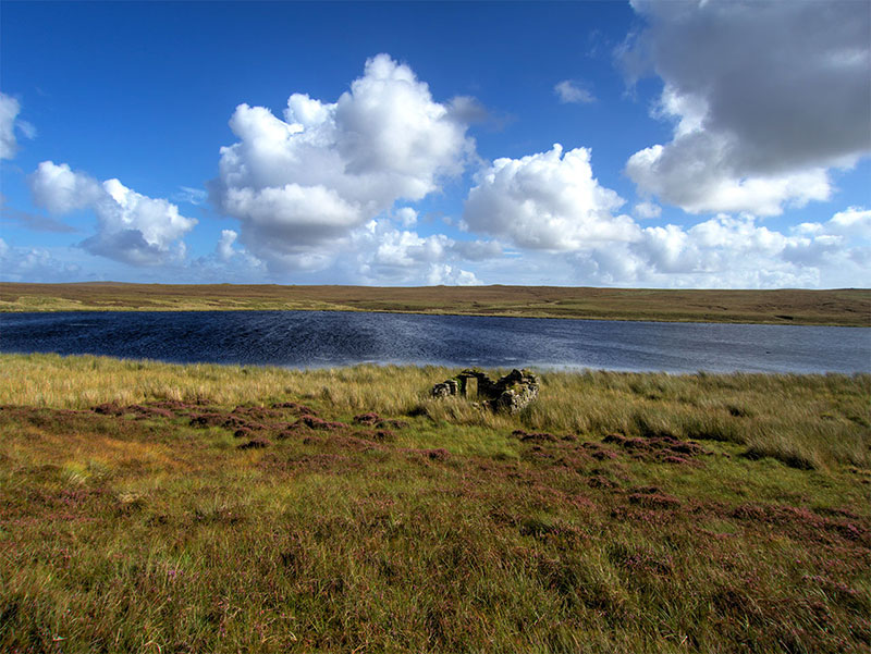 Trout loch on the Isle of Lewis